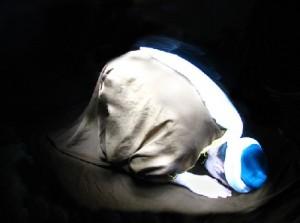 A Muslim prostrating in namaz